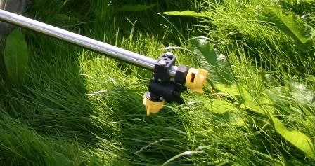 hedge nozzle- web small