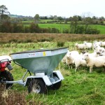 Take the hassle out of feeding your sheep!